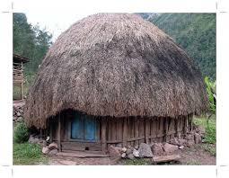 Provinsi Papua Rumah Tradisional Honai