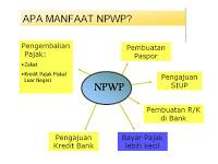 Cara Pendaftaran NPWP ONLINE TERLENGKAP