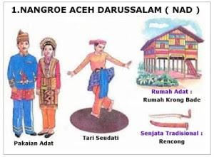40 Koleksi Gambar Rumah Adat Aceh Dan Keterangannya Gratis
