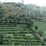 Pengertian kenampakan alam,buatan Indonesia,Contoh serta gambar