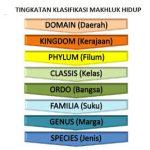 Klasifikasi Makhluk Hidup Pengertian Tujuan Manfaat Contoh Tata Nama