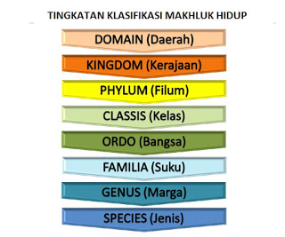Klasifikasi Makhluk Hidup Pengertian Tujuan Manfaat dan Tata Nama