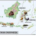 Persebaran Flora dan Fauna di Indonesia juga Dunia