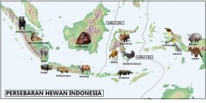 Persebaran Flora dan Fauna di Indonesia Dunia