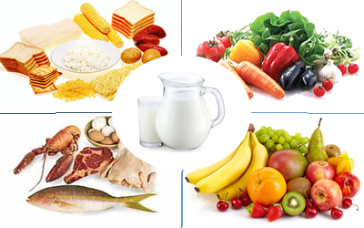 Pengertian Contoh Makanan 4 Sehat 5 Sempurna